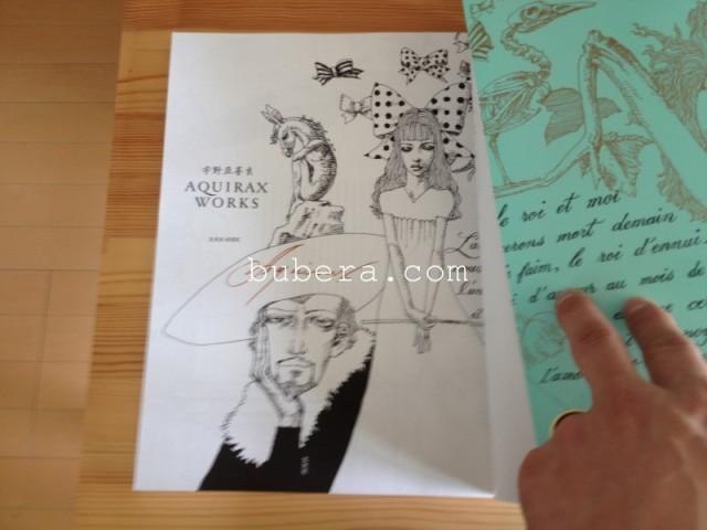 宇野亞喜良 AQUIRAX WORKS (玄光社MOOK) 署名入り (3)