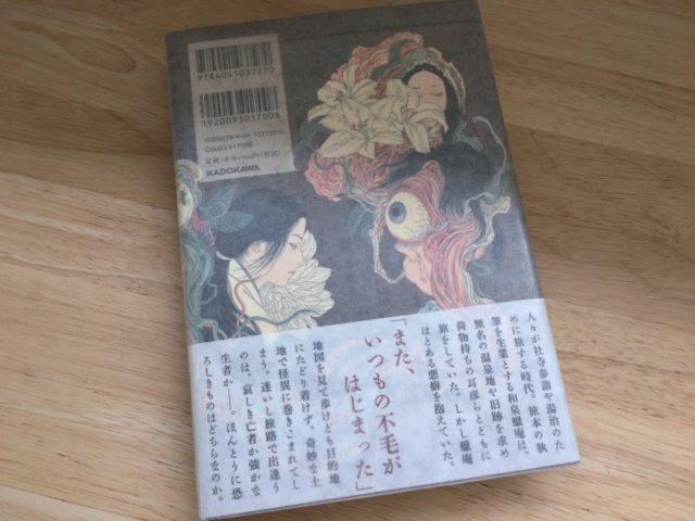 私のサイクロプス (作:山白朝子/画:山本タカト) (2016) 裏表紙