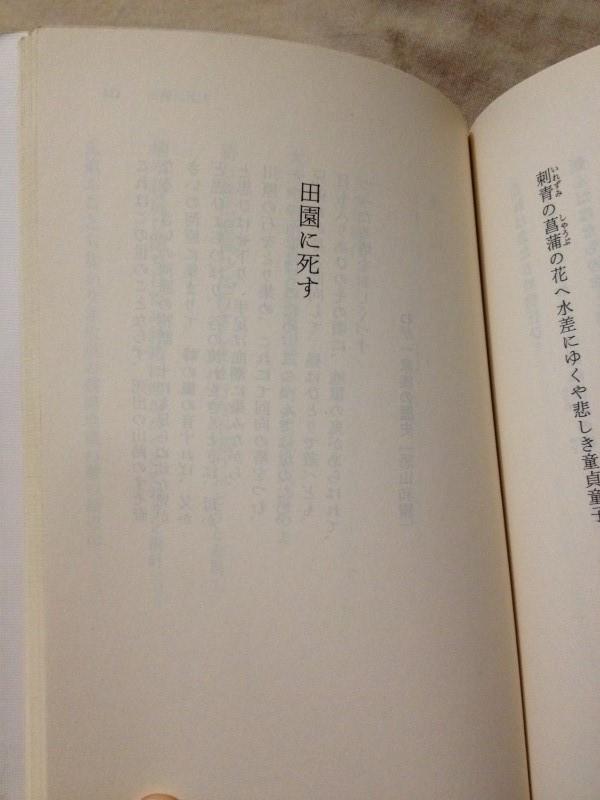 寺山修司青春歌集(角川文庫) (3)