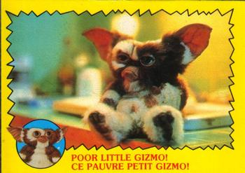 Poor Little Gizmo