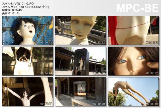 いおぎい国の休日~人形作家・木村龍の世界~ 2013 (DVD) Video