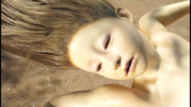 いおぎい国の休日~人形作家・木村龍の世界~ 2013 (DVD) (5)