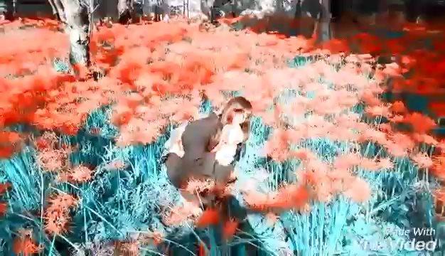 水色赤 - 化色拾遺譚予告
